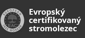 Evropský certifikovaný stromolezec